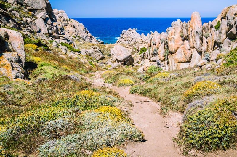 Chemin de Walky entre les formations de roche bizarres de granit dans le Testa de capo, Sardaigne, Italie photo libre de droits