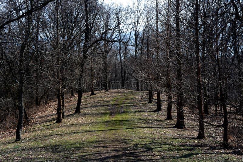 Chemin en hiver en retard images stock