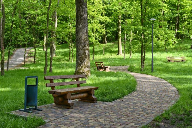 Chemin et banc de parc image stock
