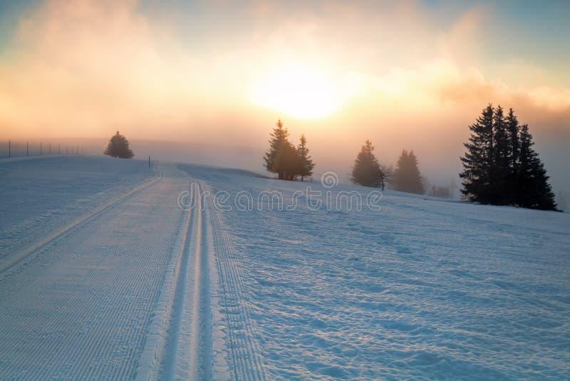 Chemin et lumière du soleil de neige de ski photo libre de droits