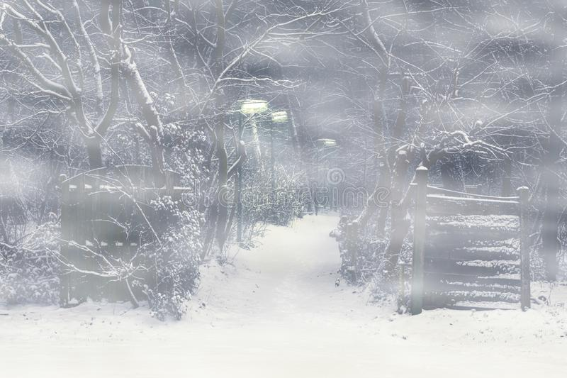 Chemin forestier avec une porte en bois et des lampadaires allumés une nuit rampante et brumeuse, scène effrayante d'horreur photos libres de droits