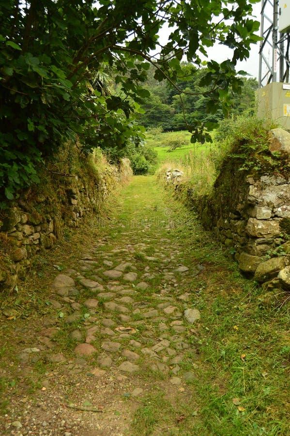 Chemin lapidé fantastique sur l'itinéraire de l'Encantau Camin au Conseil de Llanes Nature, voyage, paysages, forêts, imagination images stock