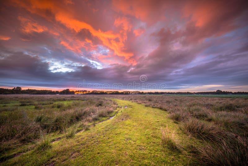 Chemin spirituel de concept de voyage à travers l'und naturel sauvage de paysage photos libres de droits