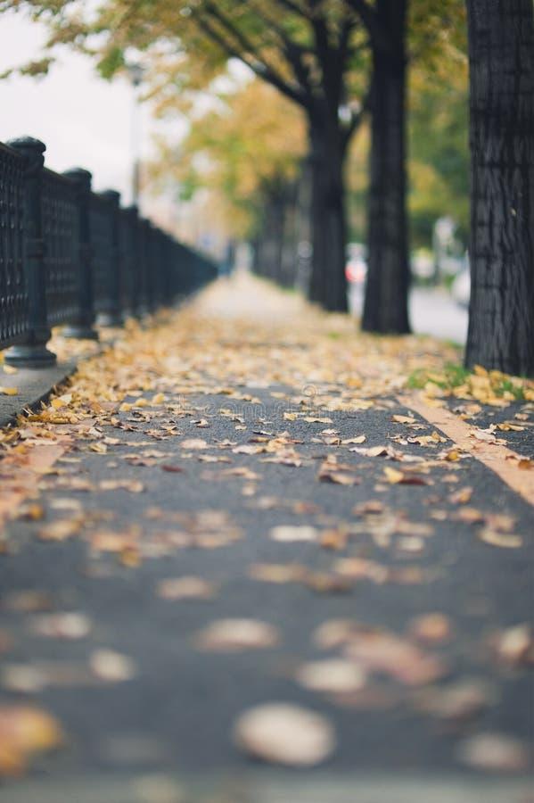 Chemin urbain d'automne photos stock