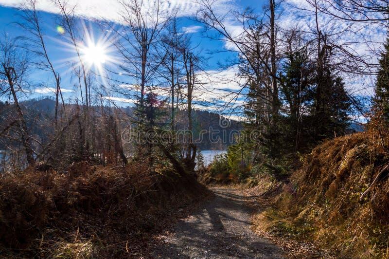 Chemin vers le lac Lokve photographie stock libre de droits