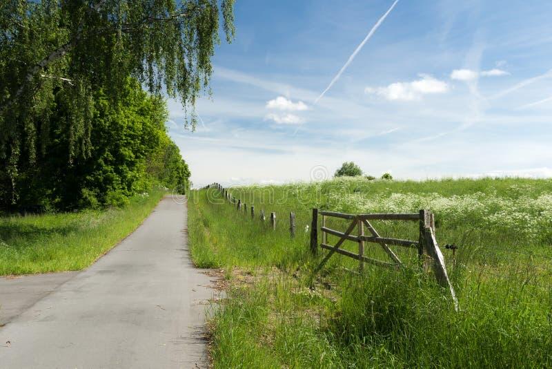 Chemin vide de bicyclette image libre de droits