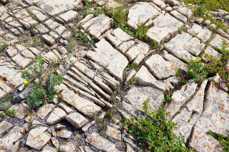 Chemisch doorstane barsten in kalksteen stock foto's