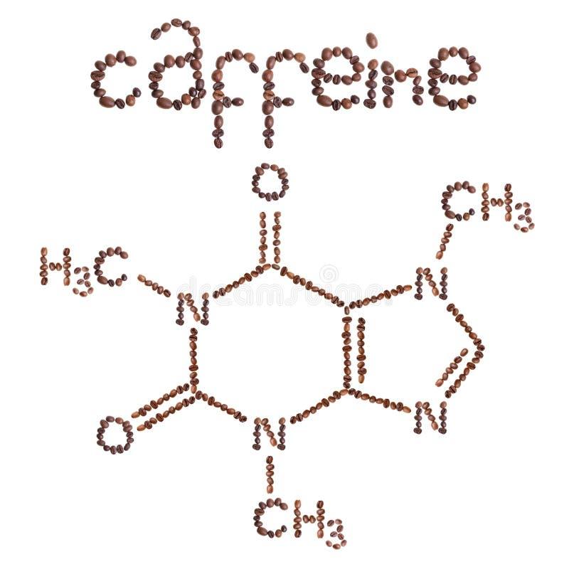Chemische Molekülstruktur des Koffeins Die Strukturformel des Koffeins mit dunkelbraunen Kaffeebohnen lizenzfreie abbildung