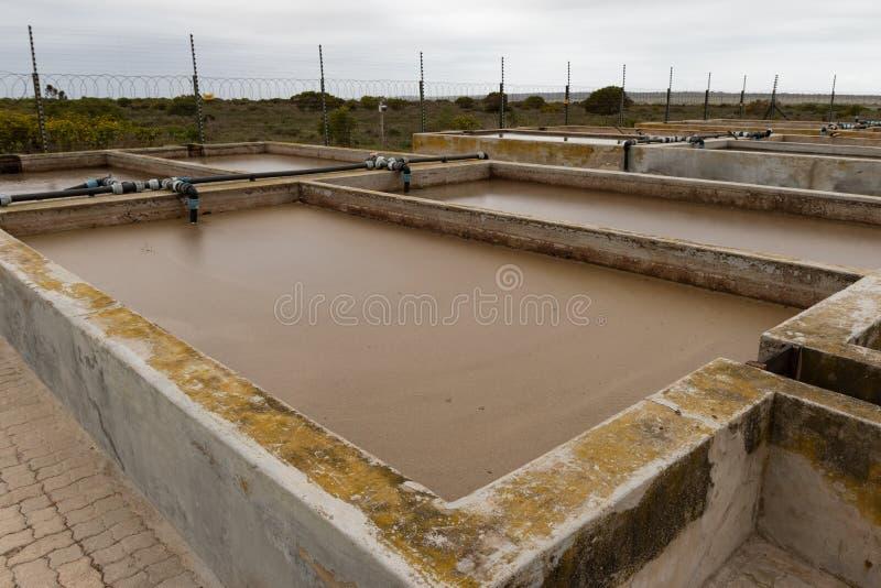 Chemisches überschüssiges Reservoir der Fabrik mit Schlamm lizenzfreie stockbilder