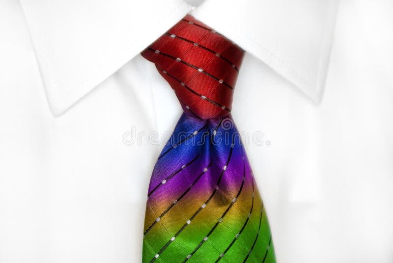 Chemise blanche RainbowTie images libres de droits