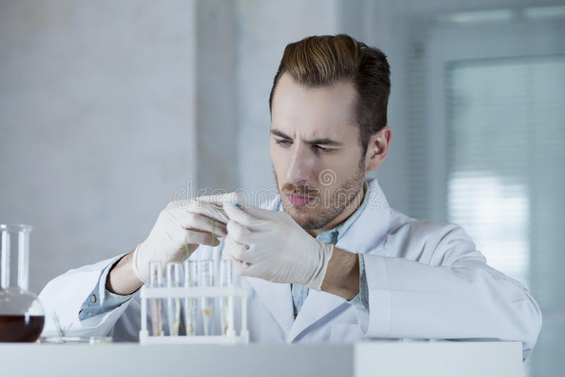 Chemist in the gloves working with reagents. The chemist in the gloves is working with reagents in the lab stock photo