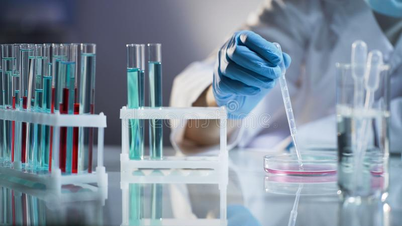 download chemist intern mixing liquids waiting for chemical reaction at science lab stock photo