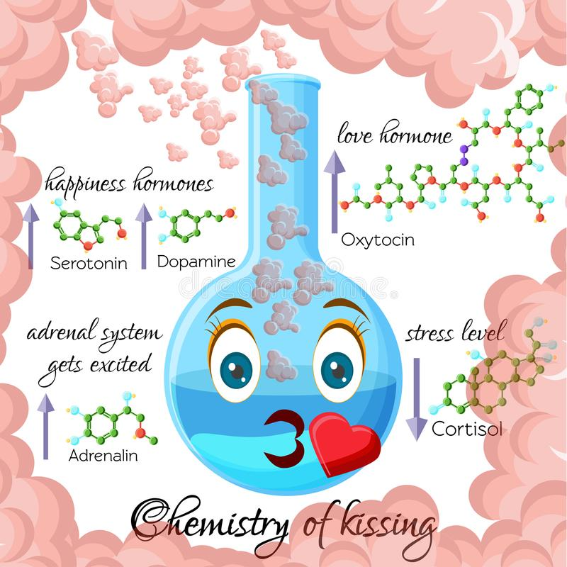 Chemistry of kissing cartoon style infographics with hormones that are released during kissing. Chemistry of kissing cartoon style infographics, showing royalty free illustration