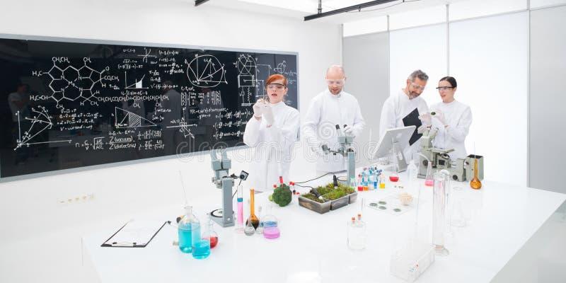 Chemistry lab experimental studies stock images