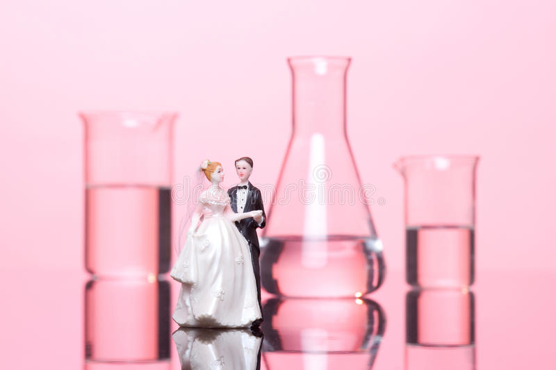 Download Chemistry of Love stock photo. Image of closeup, groom - 24173856
