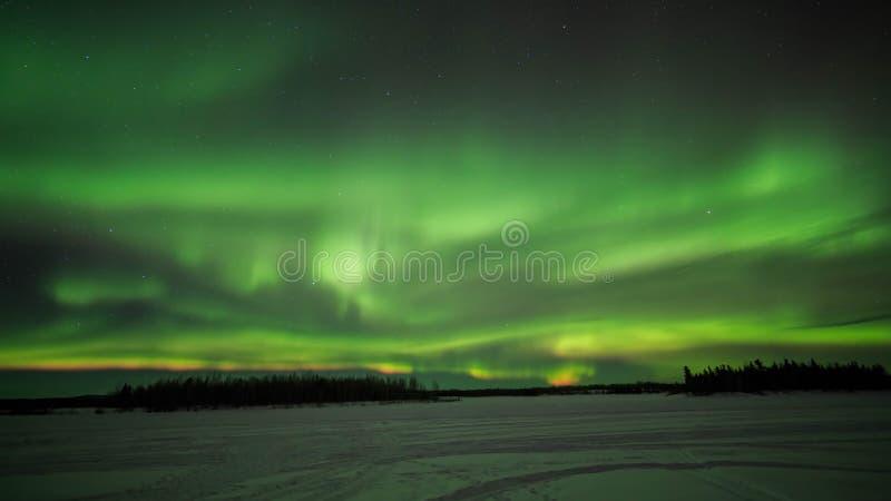 Chena湖,极光,在阿拉斯加,费尔班克斯的夜 免版税库存图片
