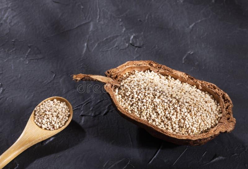 White Quinoa Seeds - Chenopodium quinoa royalty free stock photography