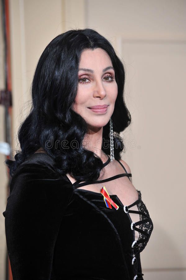 Download Cher editorial stock image. Image of hotel, golden, picture - 26491234