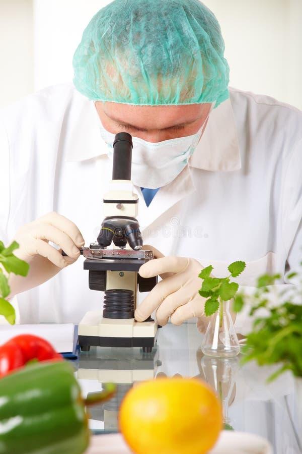 Chercheur supportant un légume d'OGM dans le laboratoire photo libre de droits