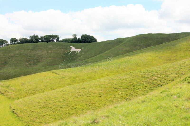 Cherhill white horse, Wiltshire England royalty free stock photo