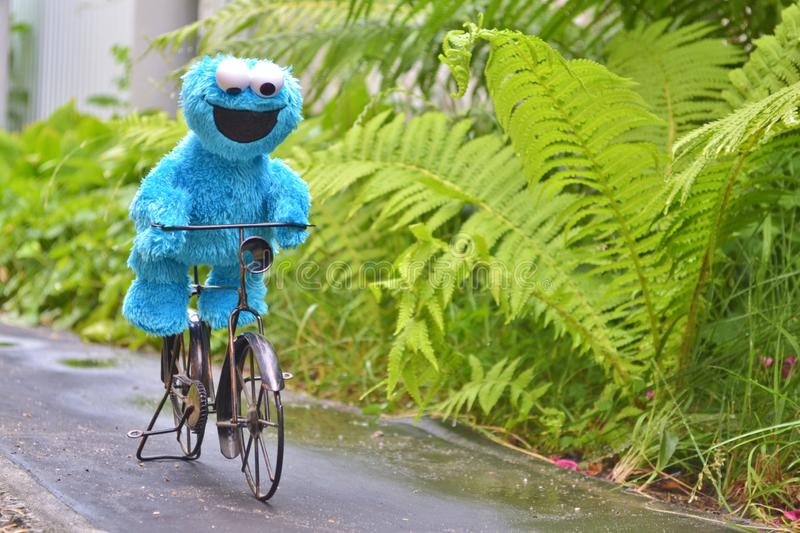 Cherkasy, Ukraine, June 13, 2019 - Toy Cookie monster funny riding a black bike on the path among the plants stock images
