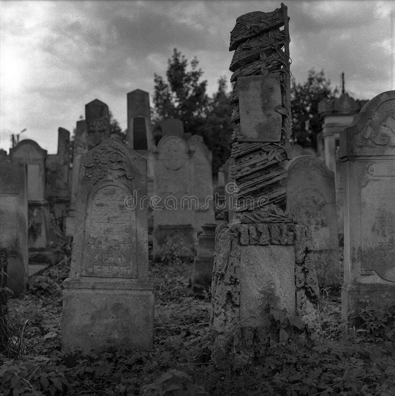 Old abandoned Jewish cemetery with stone graves between trees stock photography