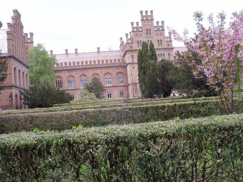 Chernivtsy Krajowy uniwersytet obrazy royalty free
