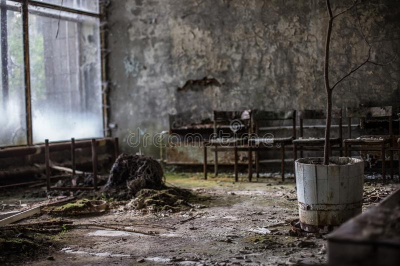 Chernobyl 30 Years after – Public Domain CC0 royalty free stock photo