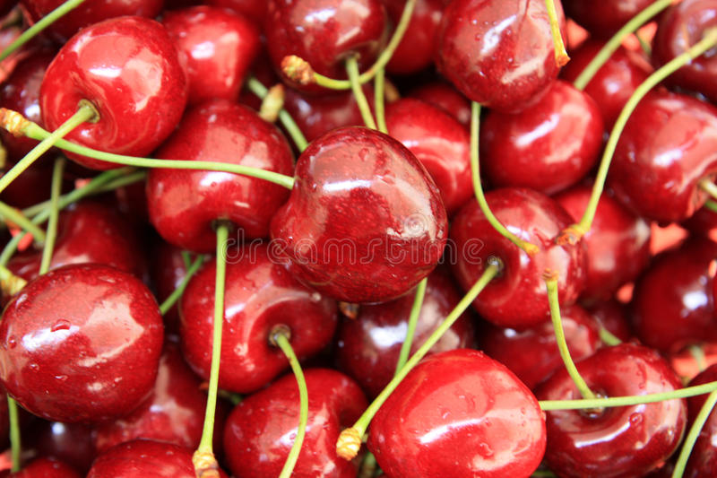 Download Cherries stock image. Image of healthy, cherry, food - 10455209