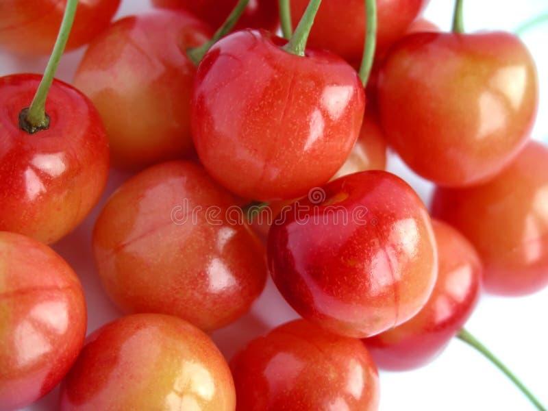 Download Cherries stock photo. Image of bordo, nutrition, nature - 178342