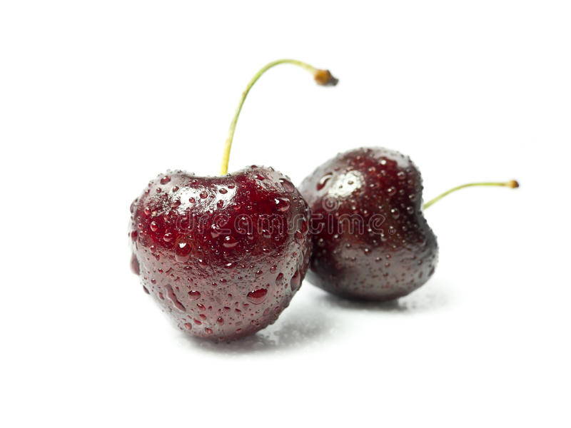 Cherries. On white background with shadow stock image