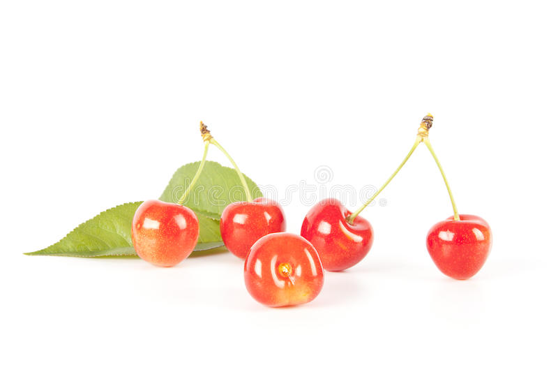 Download Cherries stock photo. Image of food, delicious, riped - 19940502