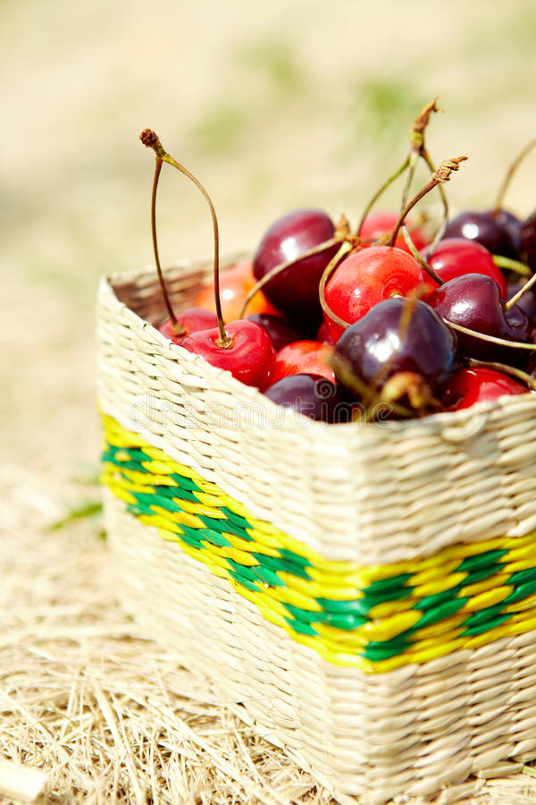 Download Cherries Royalty Free Stock Photography - Image: 26817637