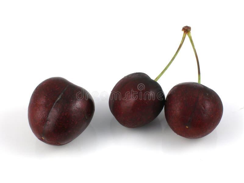 Cherries stock photography