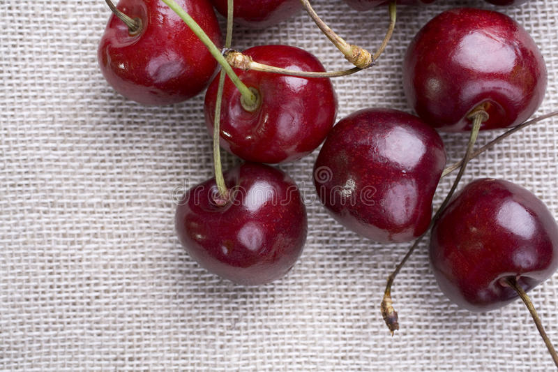 Download Cherries from Above stock photo. Image of nutrition, muslin - 12024068