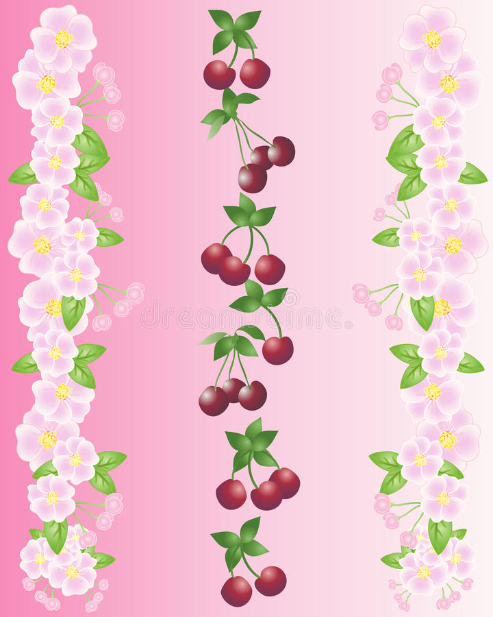 Download Cherries And Blossom Royalty Free Stock Image - Image: 19168646