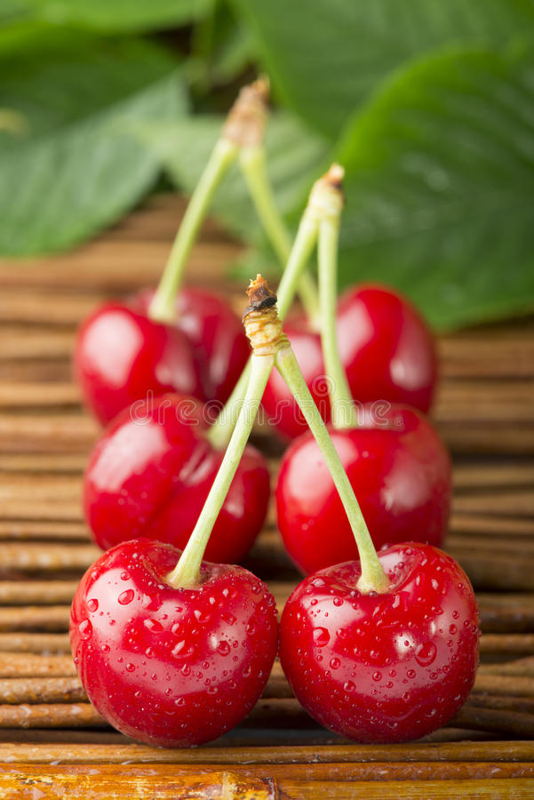Download Cherries And Branch With Leaves Stock Photo - Image: 31369218