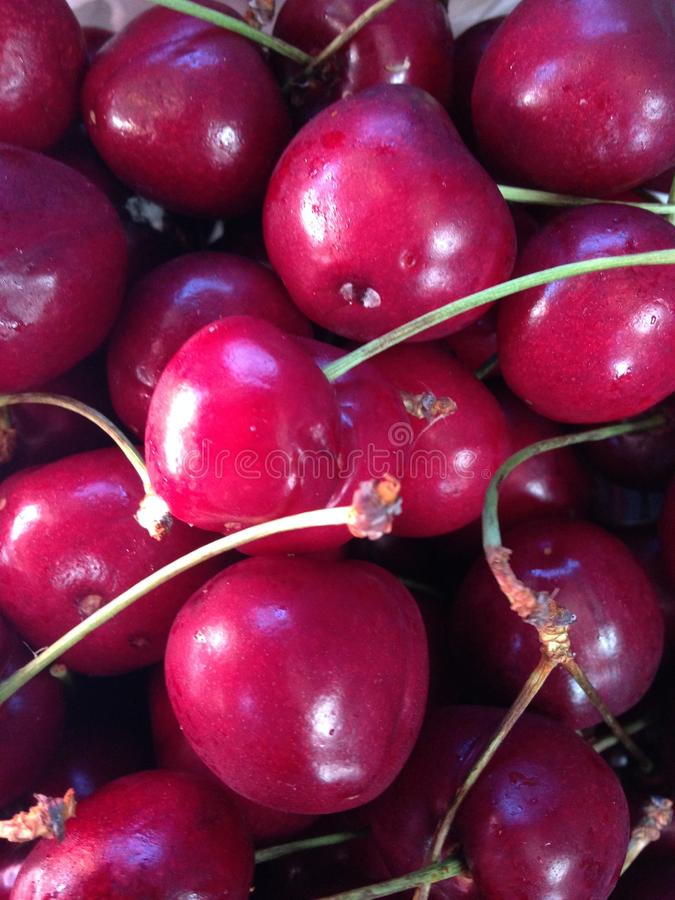 Cherries. A cherry is the fruit of many plants of the genus Prunus, and is a fleshy drupe. The cherry fruits of commerce usually are obtained from a limited royalty free stock photos