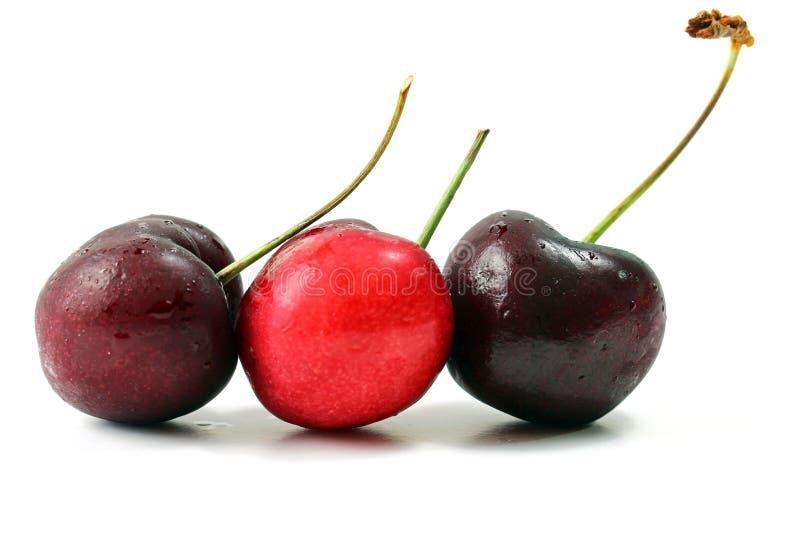 Download Cherries stock photo. Image of dessert, vegetarian, sweet - 74037670