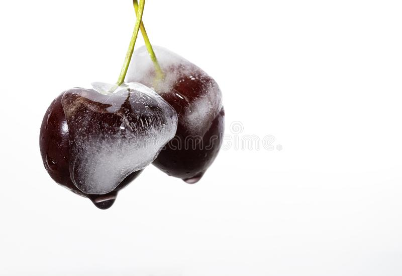 Cherries frozen on white stock image