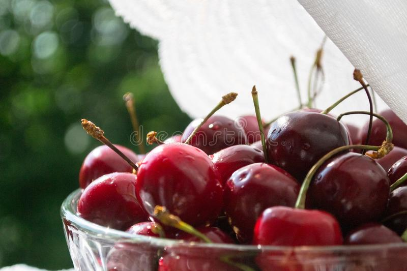Cherries in glass bowl on light cloth. Cherries. Cherries in glass bowl. Red cherry. Fresh cherries. Cherry on white light cloth. Healthy eating and food concept stock photography