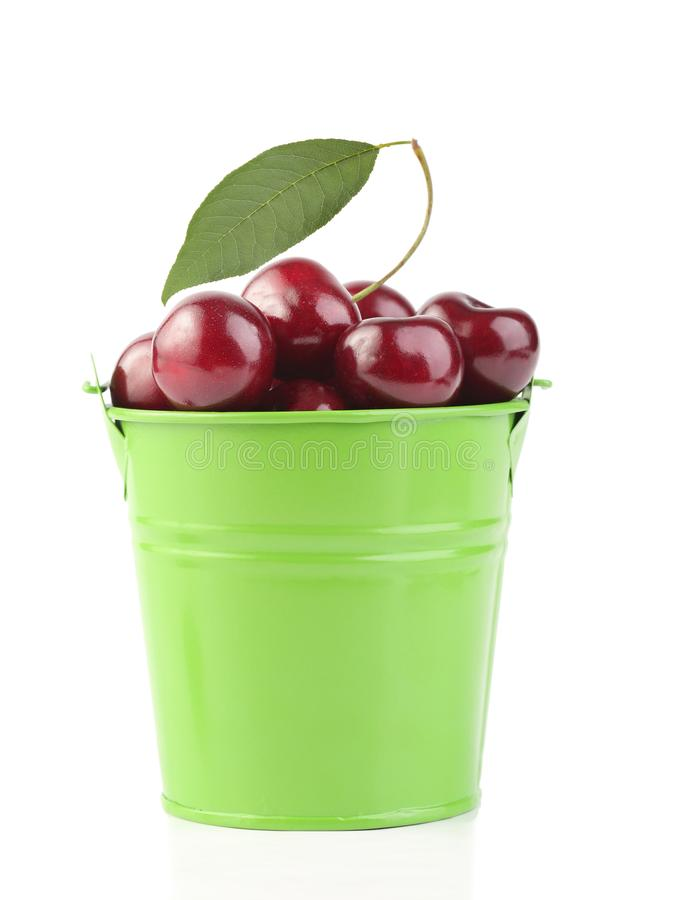 Cherries in green pail isolated on white. Background royalty free stock photo