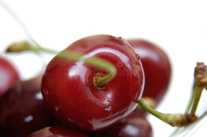 Cherries II royalty free stock image