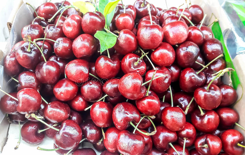 Cherries in paper box. royalty free stock photography