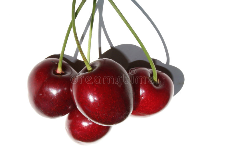 Download Cherries With Stems Royalty Free Stock Photos - Image: 187328