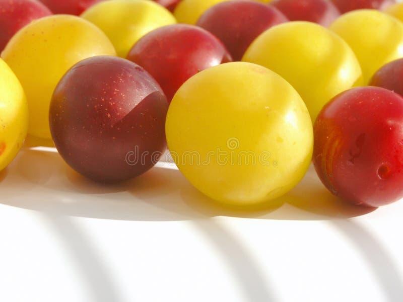 cherry śliwki zdjęcie stock