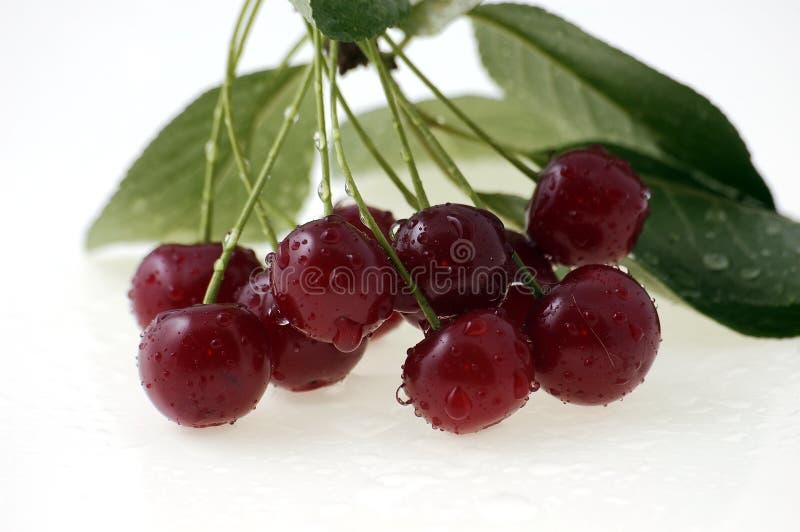 cherry świeże zdjęcia royalty free