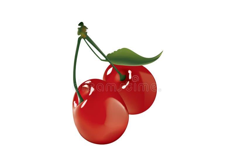 Cherry vektor illustrationer