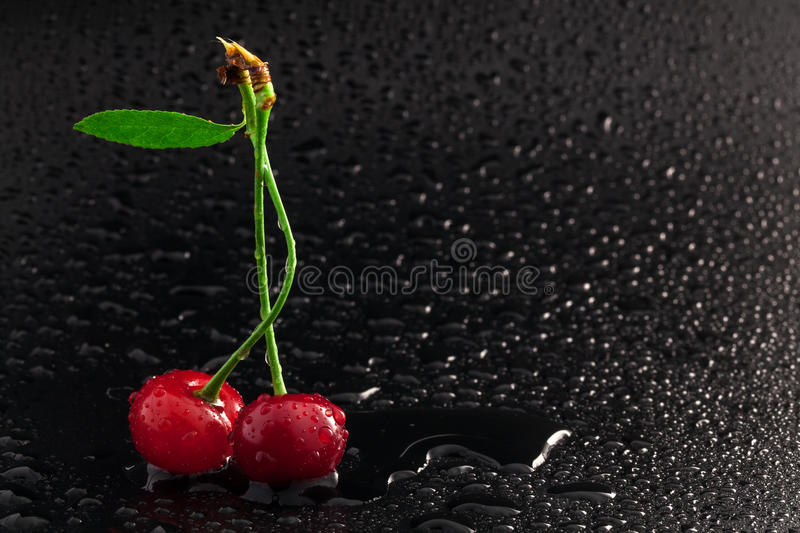 Download Cherry Royalty Free Stock Photography - Image: 25492647