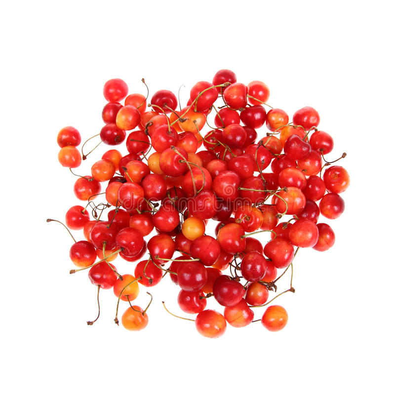 Download Cherry stock image. Image of ripe, isolated, sweet, close - 26489733
